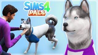 ADDING GALAXY THE HUSKY! - Sims 4 Pals