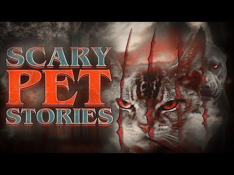 7 True Scary Pet Horror Stories