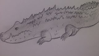 КАК НАРИСОВАТЬ КРОКОДИЛА (очень просто, для начинающих и для детей)(Здравствуйте! Предлагаю вашему вниманию видеоролик, где я показываю, как очень просто нарисовать крокодила..., 2014-09-28T05:00:06.000Z)