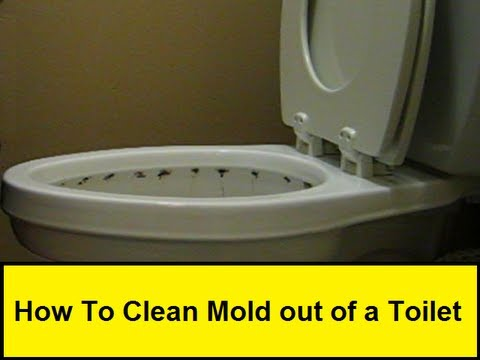 How To Clean Mold Out Of A Toilet Howtolou Com Youtube
