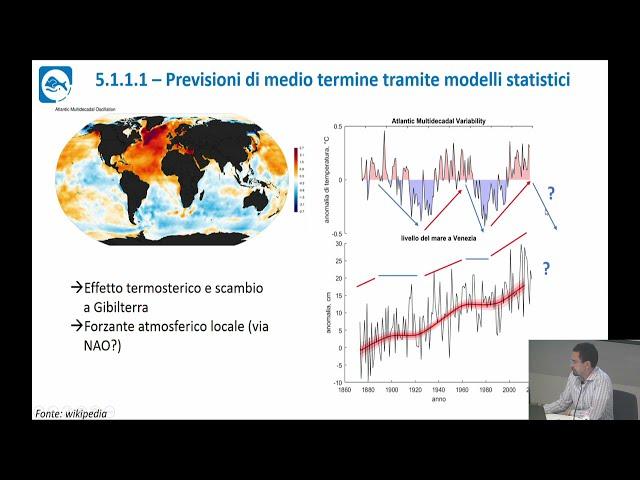 Scenari di cambiamento climatico per Venezia e la sua laguna