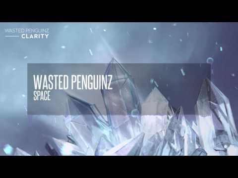 Wasted Penguinz - Space (Clarity)