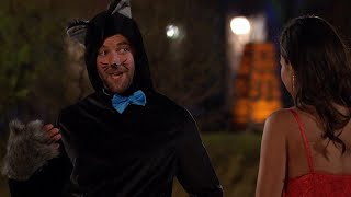 Arrivals 2021: A Cat and a Box - The Bachelorette