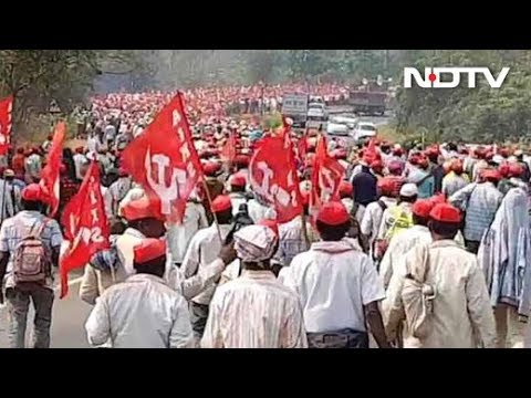 From Ground Zero In Mumbai, Maharashtra Farmers Protest