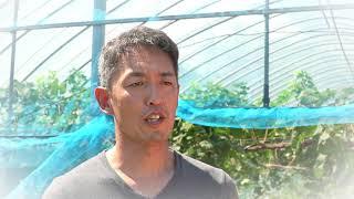 汐風香る魅惑のワイン特区(北九州市国家戦略特区)CM(リンク先ページで動画を再生します。)