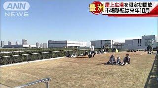 豊洲市場の屋上広場 1日限定で初の一般開放(17/11/25) thumbnail