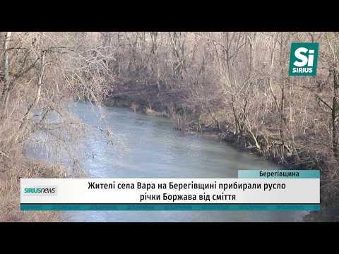 Жителі села Вара на Берегівщині прибирали русло річки Боржава від сміття