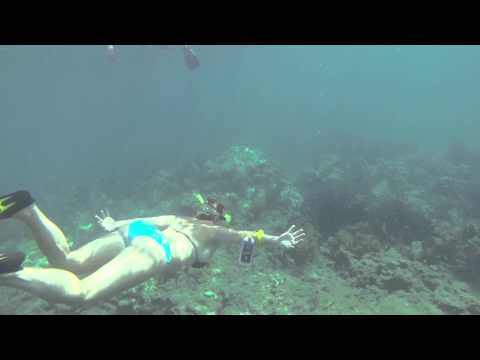 Rachail Diving Down At Sombrero Reef
