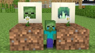 Monster School : Poor but Kind Baby Zombie - Minecraft Animation