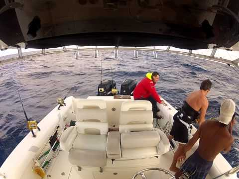 50 lb Tuna 12 mile bank Grand Cayman