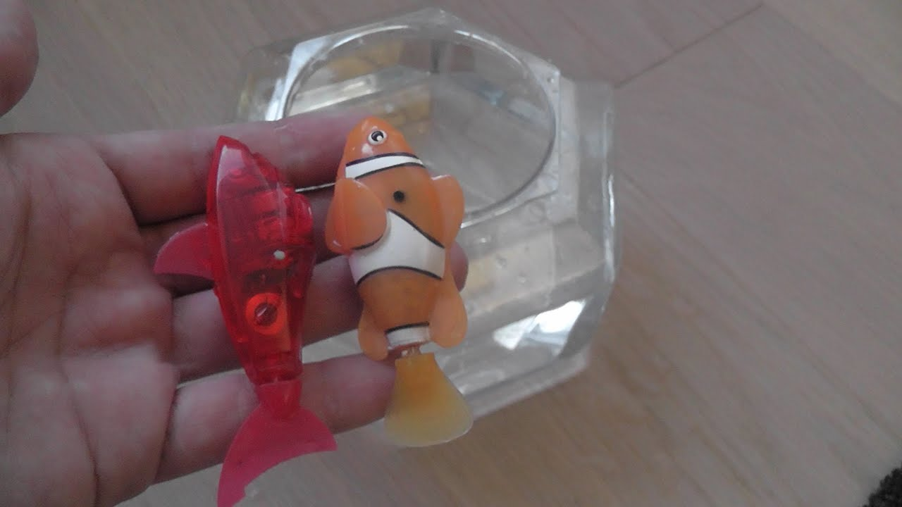 Hexbug aquabot vs robo fish youtube for Hex bugs fish
