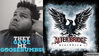 Alterbridge - Black Bird (Reaction First Listen)