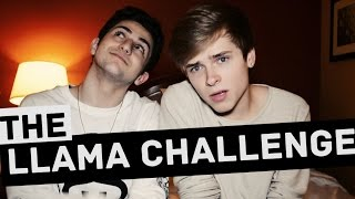 THE LLAMA CHALLENGE (Ft. Twaimz)