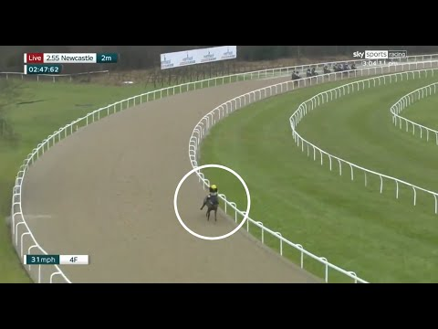Unbelievable horse race at Newcastle! 😮