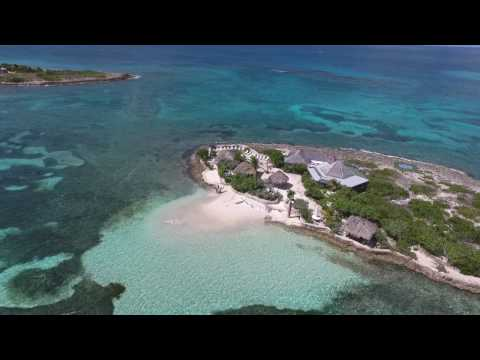 Anguilla Drone Fly of Scilly Cay Island
