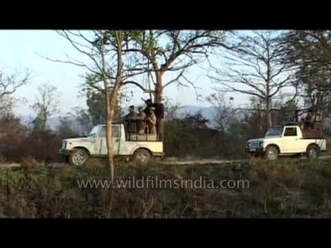 Visiting Corbett National Park: an introduction