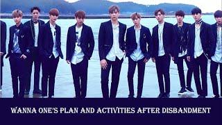 Wanna One' member activity after disbandment