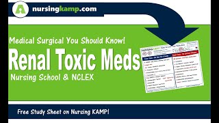 Renal Toxic Medications Med Surg KAMP Nurisng KAMP NCLEX