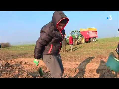 LAgroforesterie  La Valorisation Des Haies En LoirEtCher  Youtube