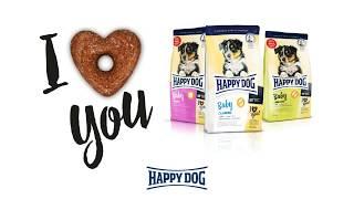 Happy Dog - Heart Shaped Loops