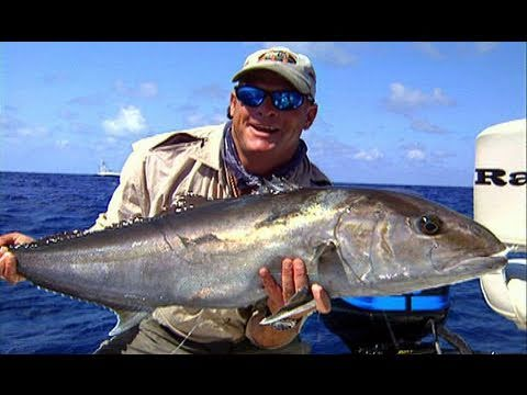 Bonefish Fishing Tarpon and Amberjack Fishing in the Florida Keys