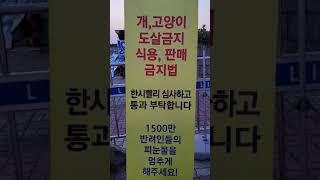 @7월23일 금요일 어제국회천막농성 주최자는 최경숙 선…