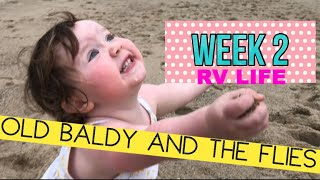 OLD BALDY and the flies-WEEK 2 : RV Life with the Reynolds