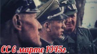 Почему офицеры СС в марте 1945г. отправили Гитлеру свои медали и нарукавные ленты в ночном горшке?