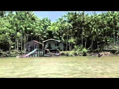 Trailer do filme Amazônia Desconhecida