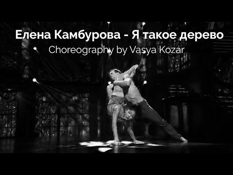 Клип Елена Камбурова - Я такое дерево.