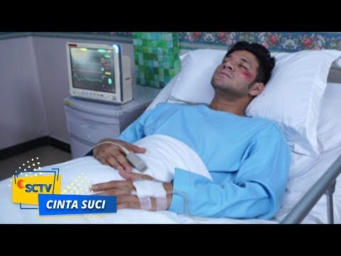 Highlight Cinta Suci - Episode 237