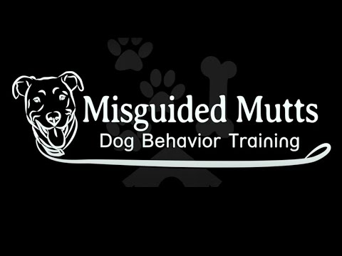 Misguided Mutts Testimonials