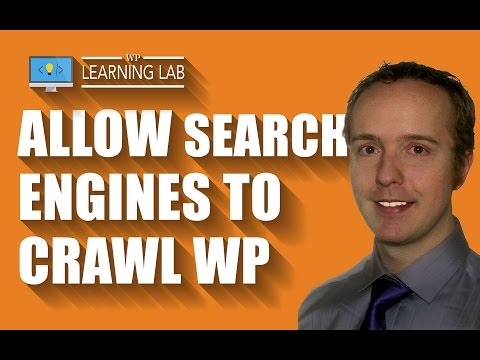 WordPress Search Engine Visibility Setting - Doing This Wrong Ruins WordPress SEO - 동영상