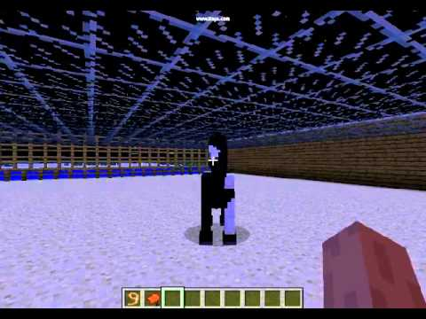 Apprendre a monter a cheval avec minecraft youtube - Cheval minecraft ...