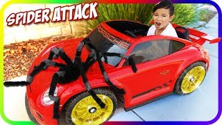 GIANT SPIDER Attack Kids on Power Wheels, Learn Colors with Fidget Spinner – TigerBox HD