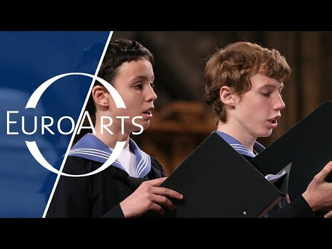 Vienna Boys' Choir: Concert on the occastion of Mozart's 250th anniversary (2006)
