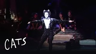 CATS: Mr Mistoffelees - Performed by Jhean Allex (Brazil 2010) | Cats the Musical