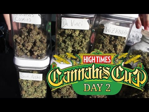 2016 SoCal Cannabis Cup Day 2 - Episode 4