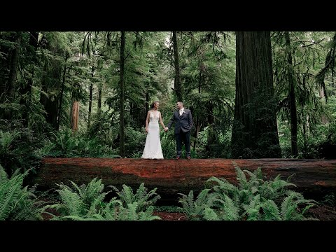 Allie and Cesar's micro wedding near the redwoods!