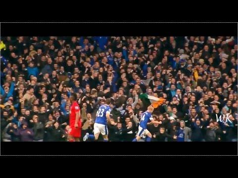 Goodbye Steven Naismith - Everton FC