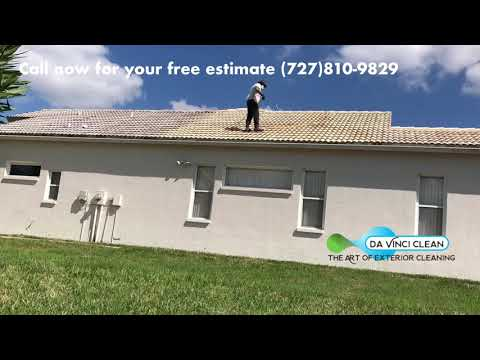 Soft Wash Roof Cleaning in Hudson Florida