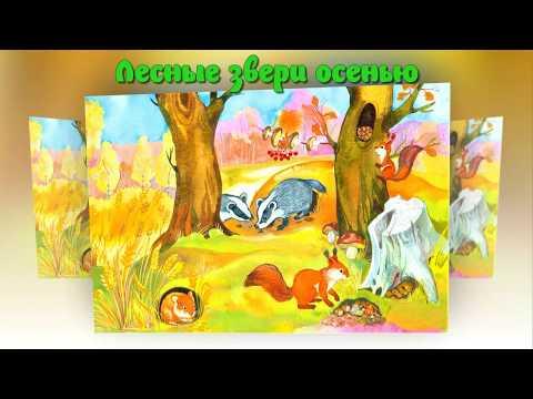 Животные осенью мультфильм