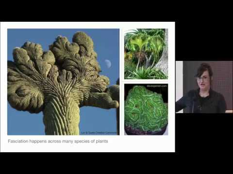 """Athena Aktipis """"Why Cancer is Everywhere"""" Lecture at Harvard Museum of Natural History"""