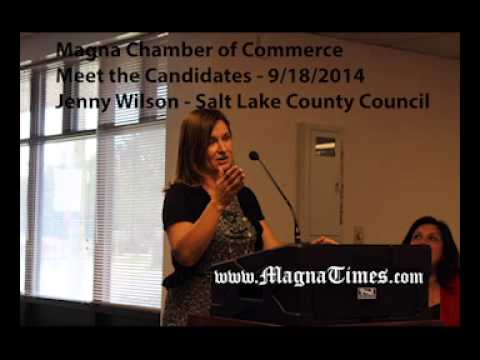 hendricks county meet the candidates 2014