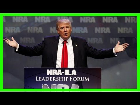 Bombshell email reveals nra link to attempted 'back-channel meeting' between trump and putin during