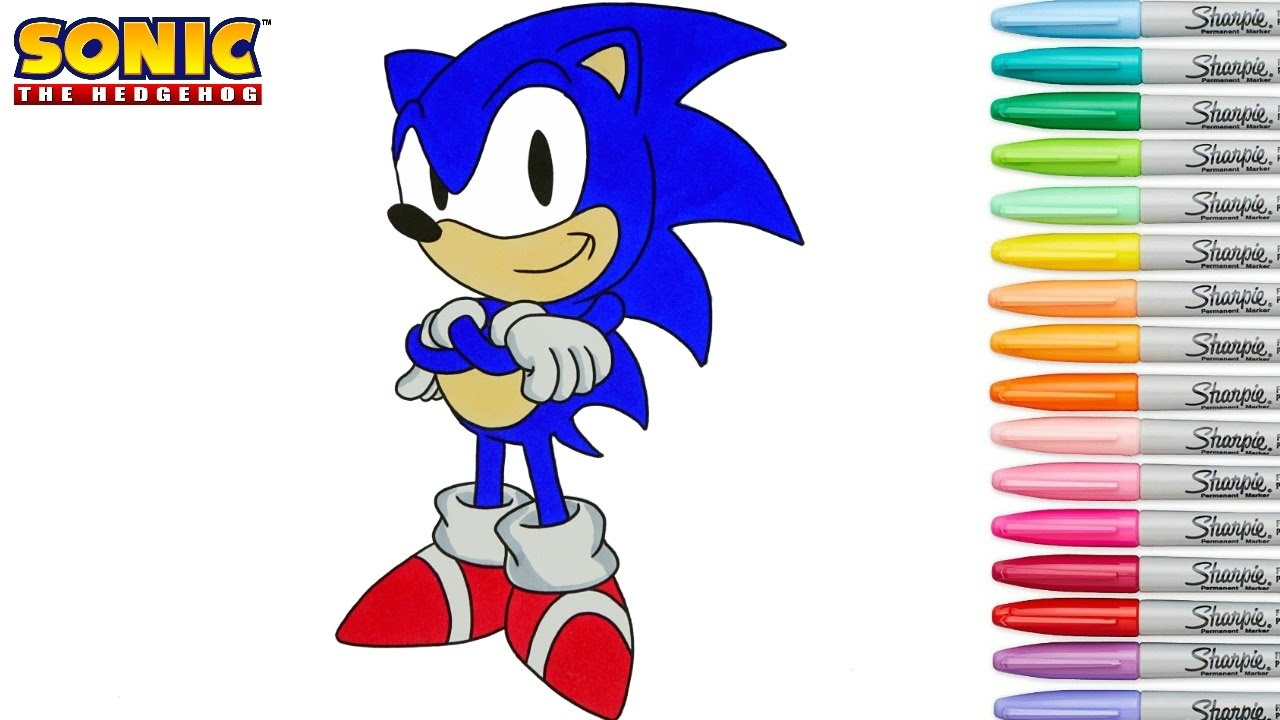 How To Make A Book Hedgehog : Sonic the hedgehog coloring book pages sega genesis