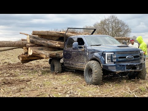 EXTREME LOGGING With The AnyLevel F350 (10TON HAUL)