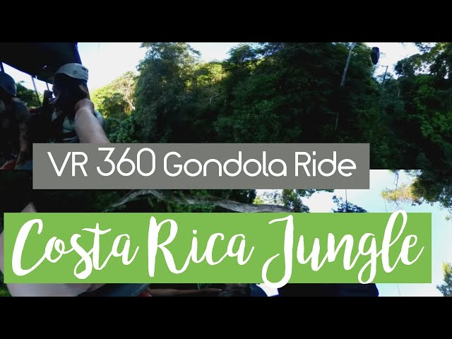360 VR Ride To Top of Costa Rica Forest Canopy