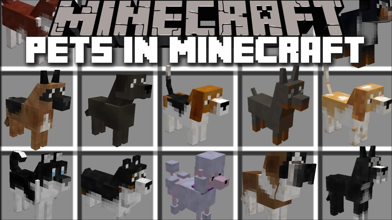 how to make dogs breed in minecraft