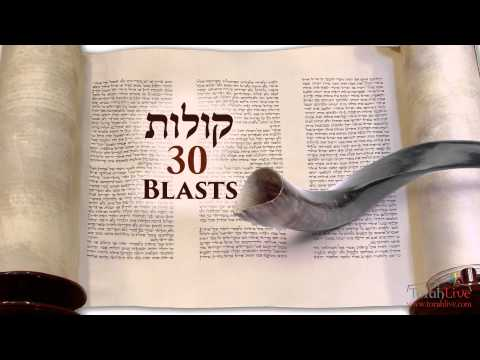 Understanding the Shofar Blasts on Rosh Hashanah